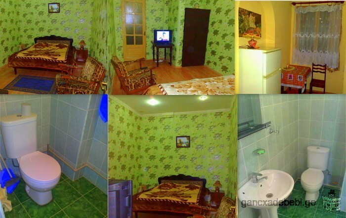 Daily rent in Tbilisi's central district 592-180509