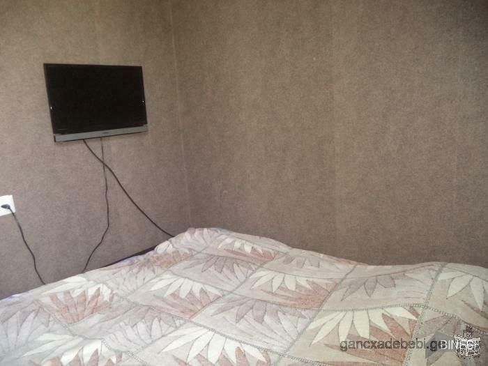 House for rent in Borjomi