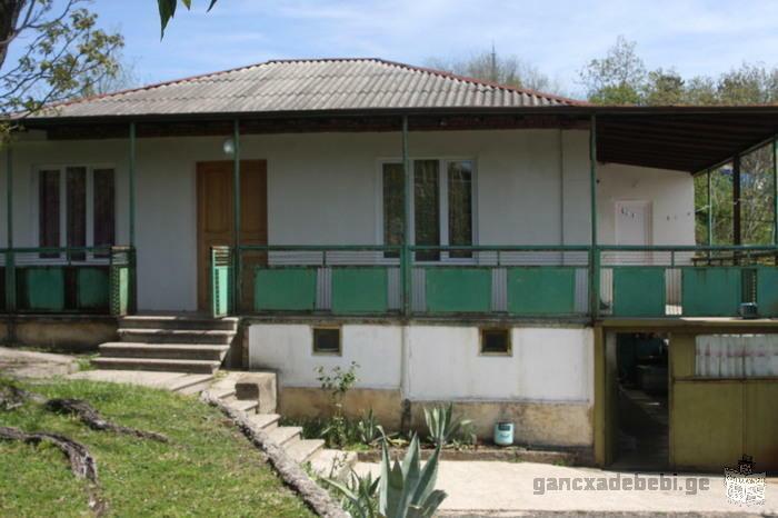 Kutaisi, Gelati street №175