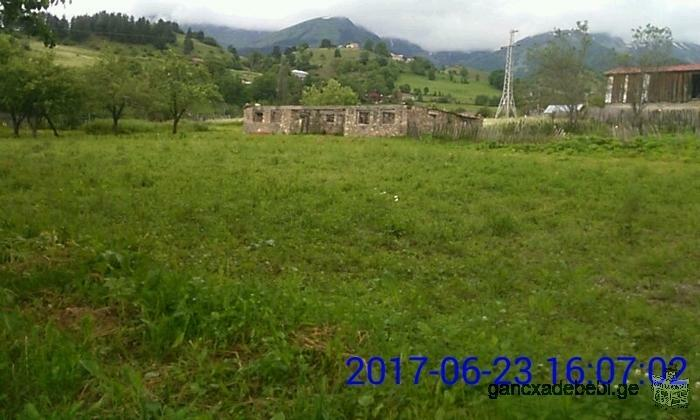 LOOKING FOR AN INVESTOR! I have a land plot in GEORGIA , SVANETI.