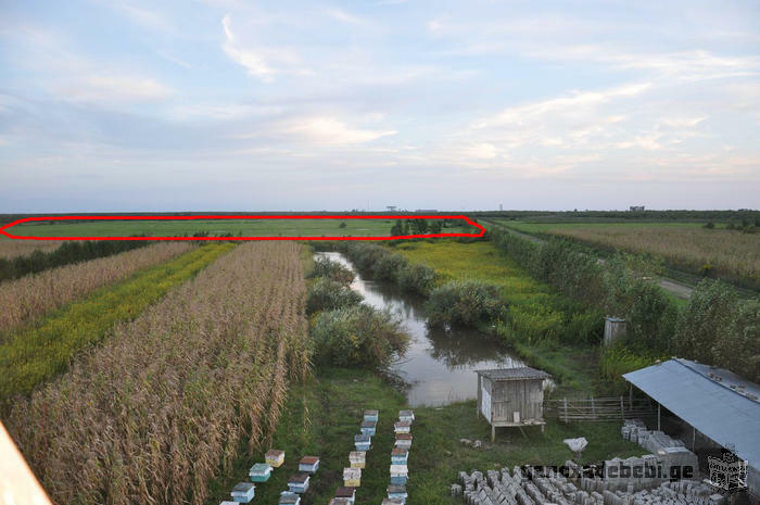 Land for Sale in Anaklia