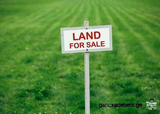 Land for sale 2500 sq.m