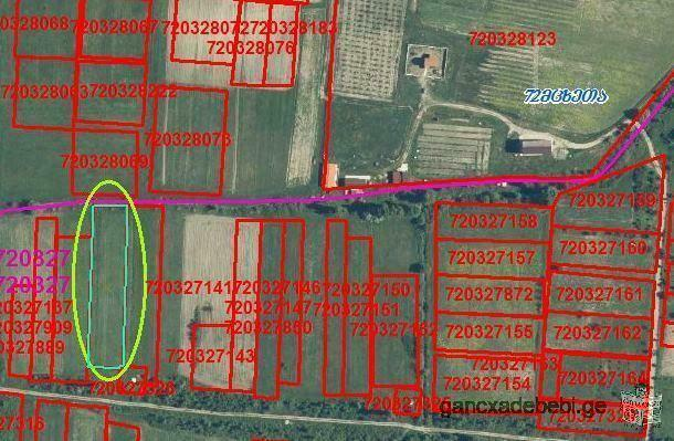 Land for sale in Natakhtari