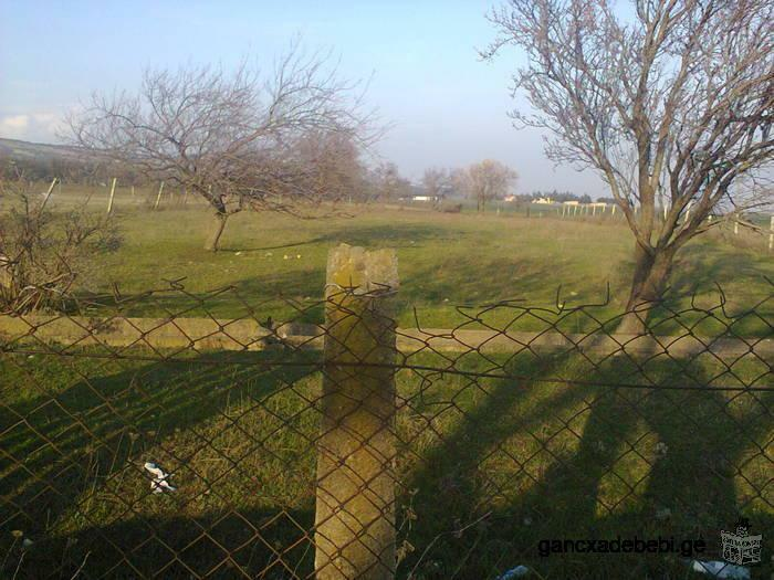 Non agricultural land for sale