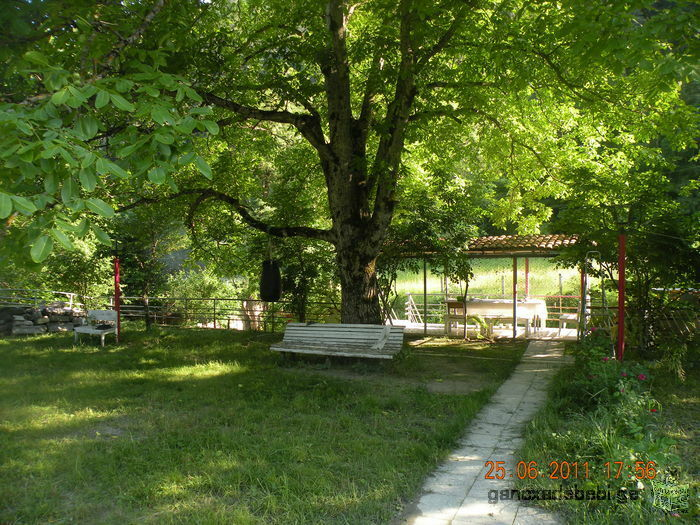 Rent a cottage near the forest in Borjomi