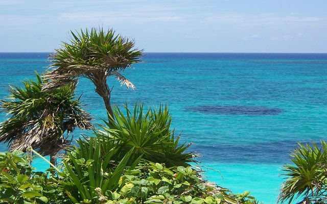 Vacation on the BLACK SEA in BATUMI, KOBULETI and UREKI