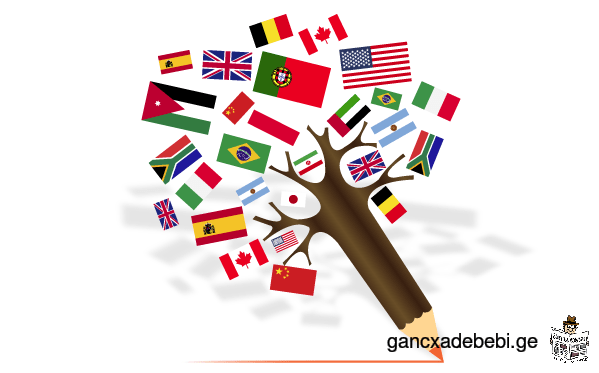 We provide translation of English documents