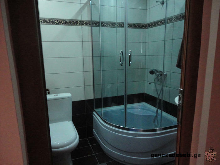 daily rent apartment in the center of Tbilisi