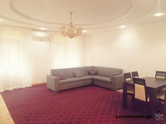 for rent 900 $