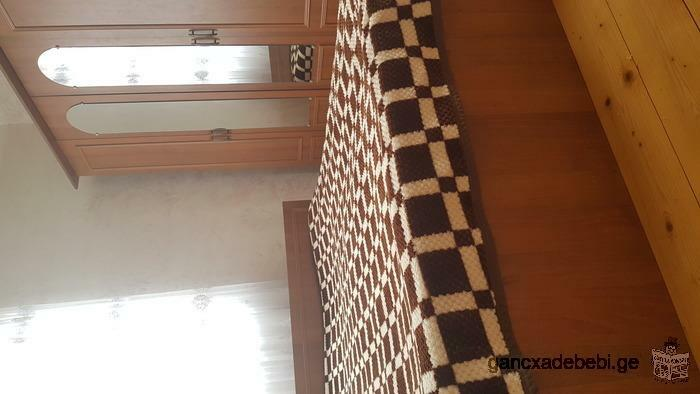 furnished apartment for rent for 1 year