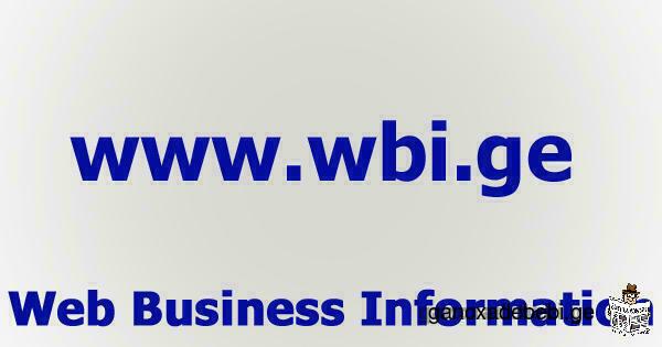 ბიზნეს საინფორმაციო ორგანიზაცია ვებ სივრცეში