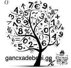 ვამზადებ მათემატიკაში!