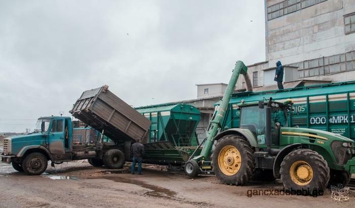 Загрузчик зерна в вагоны Мобильная Завальная Яма