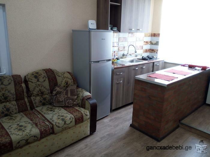 ПОСУТОЧНО супер апартаменты в Старом районе Тбилиси