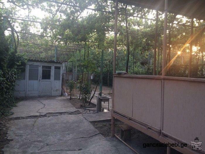 Продам квартиру в коттедже в центре города Рустави с зеленым участком