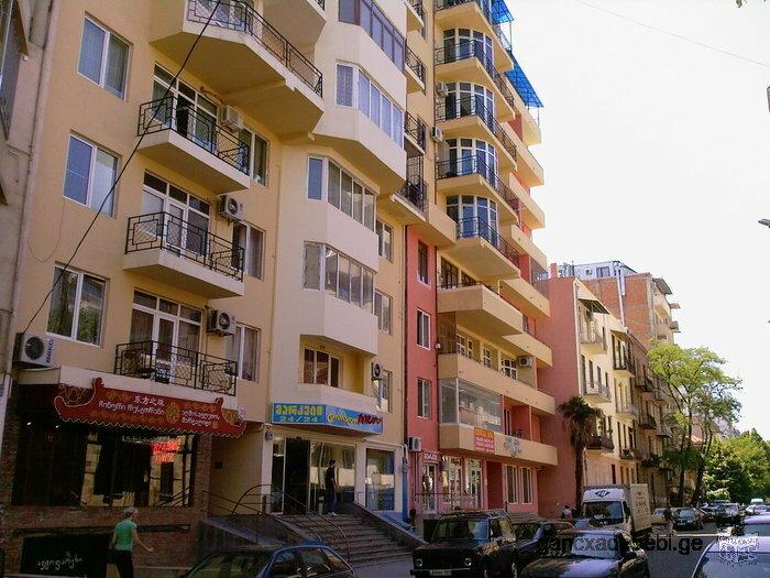 ул.Палиашви 300 кв.м. квартира с двумя подземными автопаркингами в новом корпусе рядом с Парком Ваке